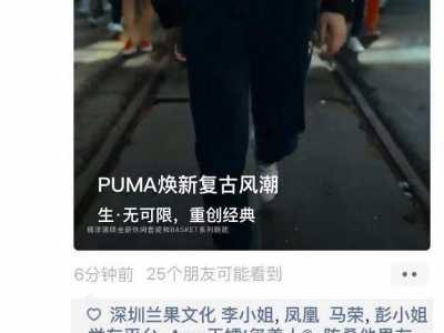 puma广告 PUMA的微信朋友圈广告